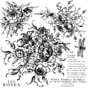 IOD ROSE TOILE 30,5x30,5 CM - dekor pecsét